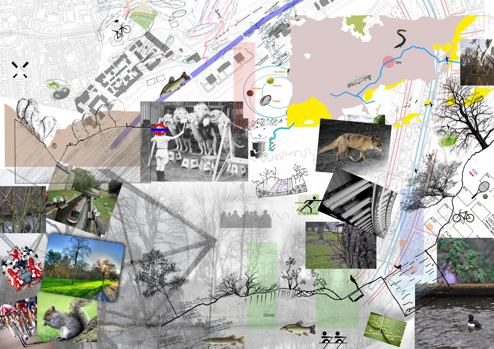 Architecture Design Webfolio: Year 2, Sense of Place, Group Site ...