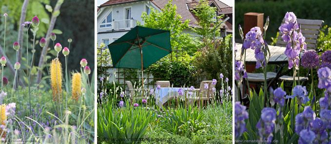 sonnig, Gartenbeete, Rabatten, schöne Beete, Rabatten im Garten