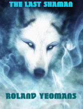 #10 in Amazon's NATIVE AMERICAN PARANORMAL NOVELS!