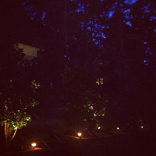 landscape lighting at night