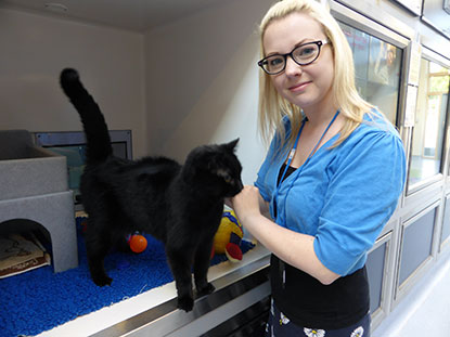 Gemma Smith, Social Media Manager at Cats Protection