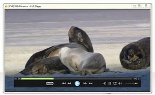 صورة اثناء تشغيل فيديو عن طريق برنامج Full Player