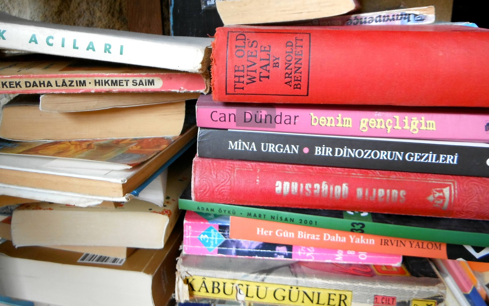 Books in a Turkish Cypriot bookshop