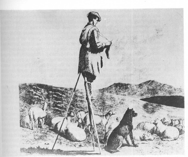 French shepherd knitting on stilts