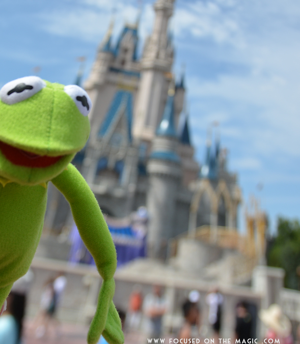 Kermit Walt Disney World