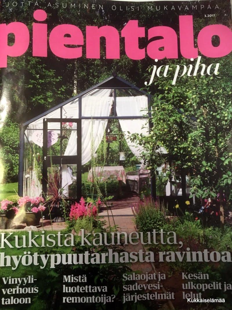 PIENTALO JA PIHA -LEHDESSÄ 5/2017
