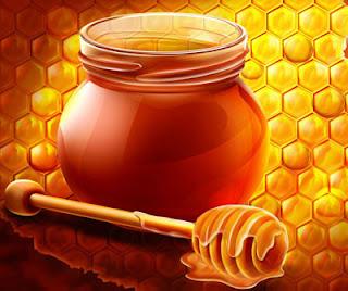 Honig Imkerei Feldt