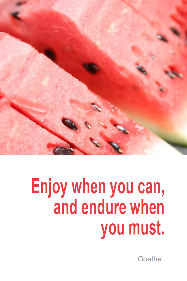 visual quote - image quotation for LIFE - Enjoy when you can, endure when you must. - Goethe