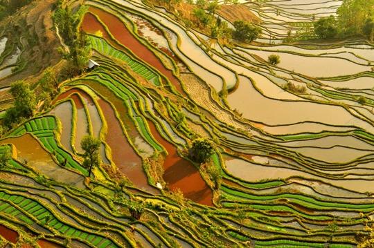 10 điểm du lịch Trung Quốc không thể bỏ qua
