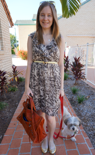 belted jeanswest animal print dress ruffle detail mbmj metallic gold mouse flats bal work