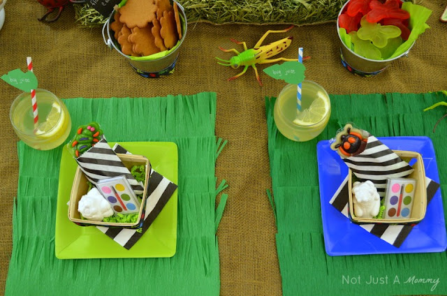 Bug Out Party fringe crepe paper placemat