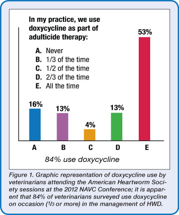 Doxycycline For Dogs Heartworms