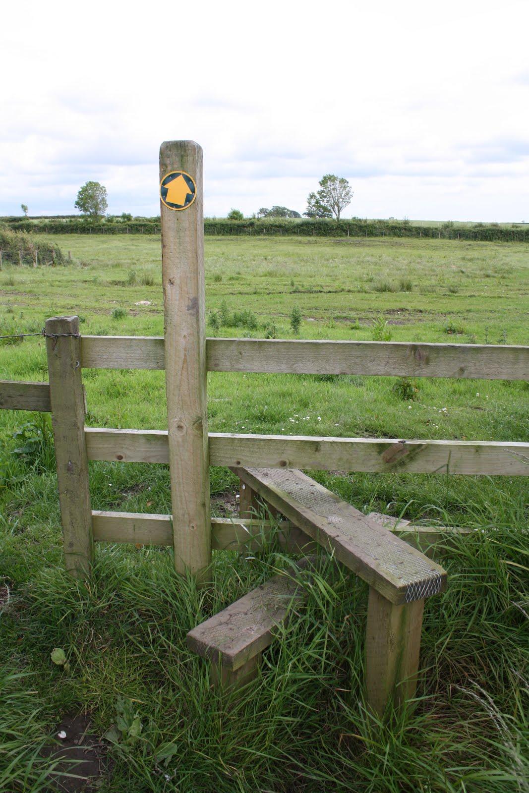 Fence Crosing