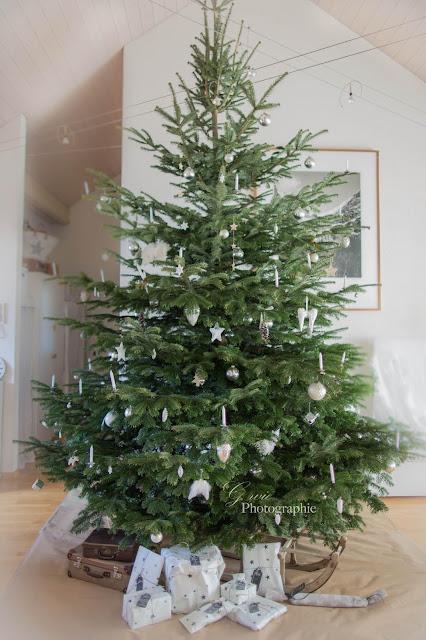 grosser tannenbaum monster-tannenbaum, grosser weihnachtsbaum