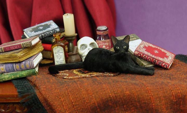 kerri pajutee miniature cat