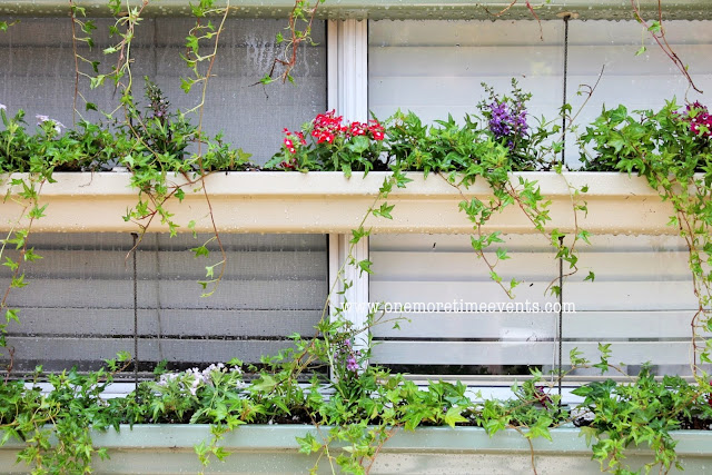Rain gutter planter boxes to cool off hot windows. How creative! By One More Time Events featured on I Love That Junk