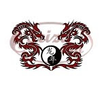 dragons tattoo / chinese writing tattoo: Year of the Dragon