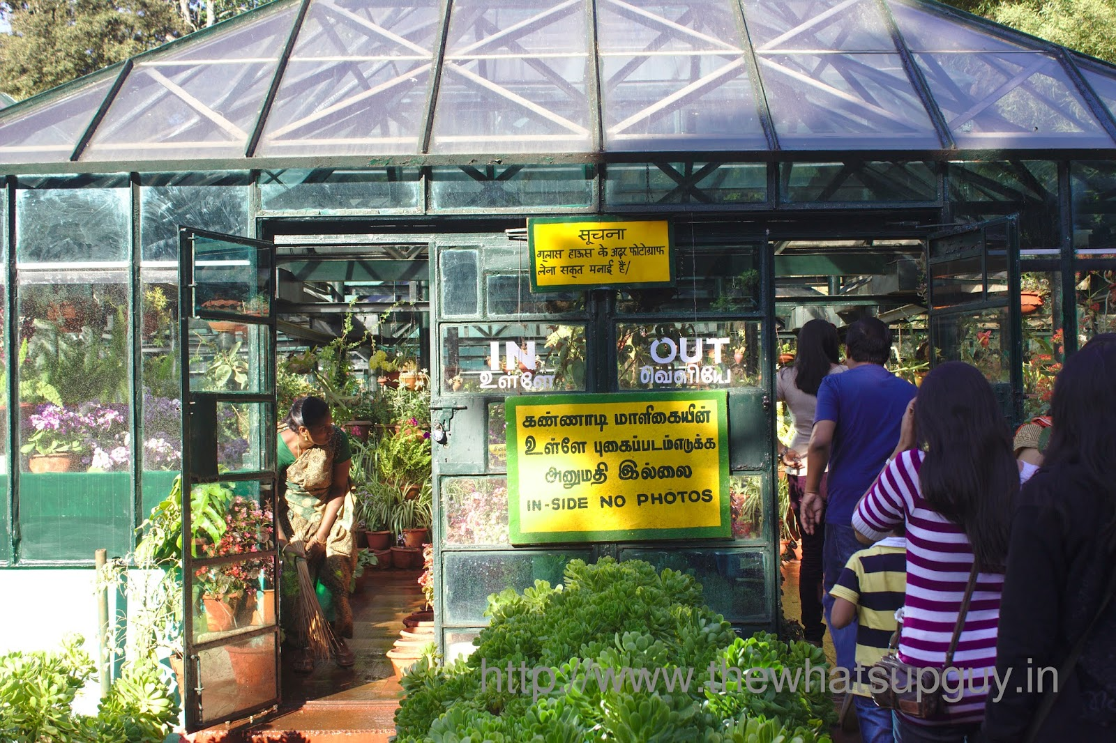 Green House In Bryant Park Kodaikanal
