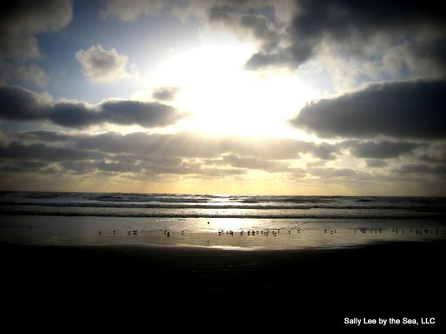 At the Beach: Beach Sunsets