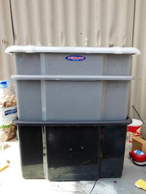 DIY wormery, budget wormery, plastic tub wormery