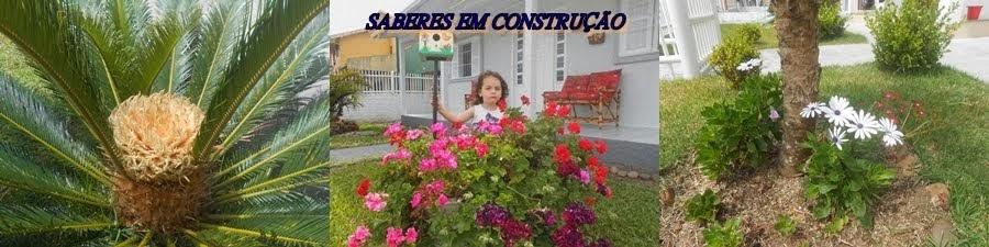 SABERES EM CONSTRUÇÃO