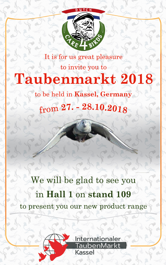 Taubenmarkt 2018