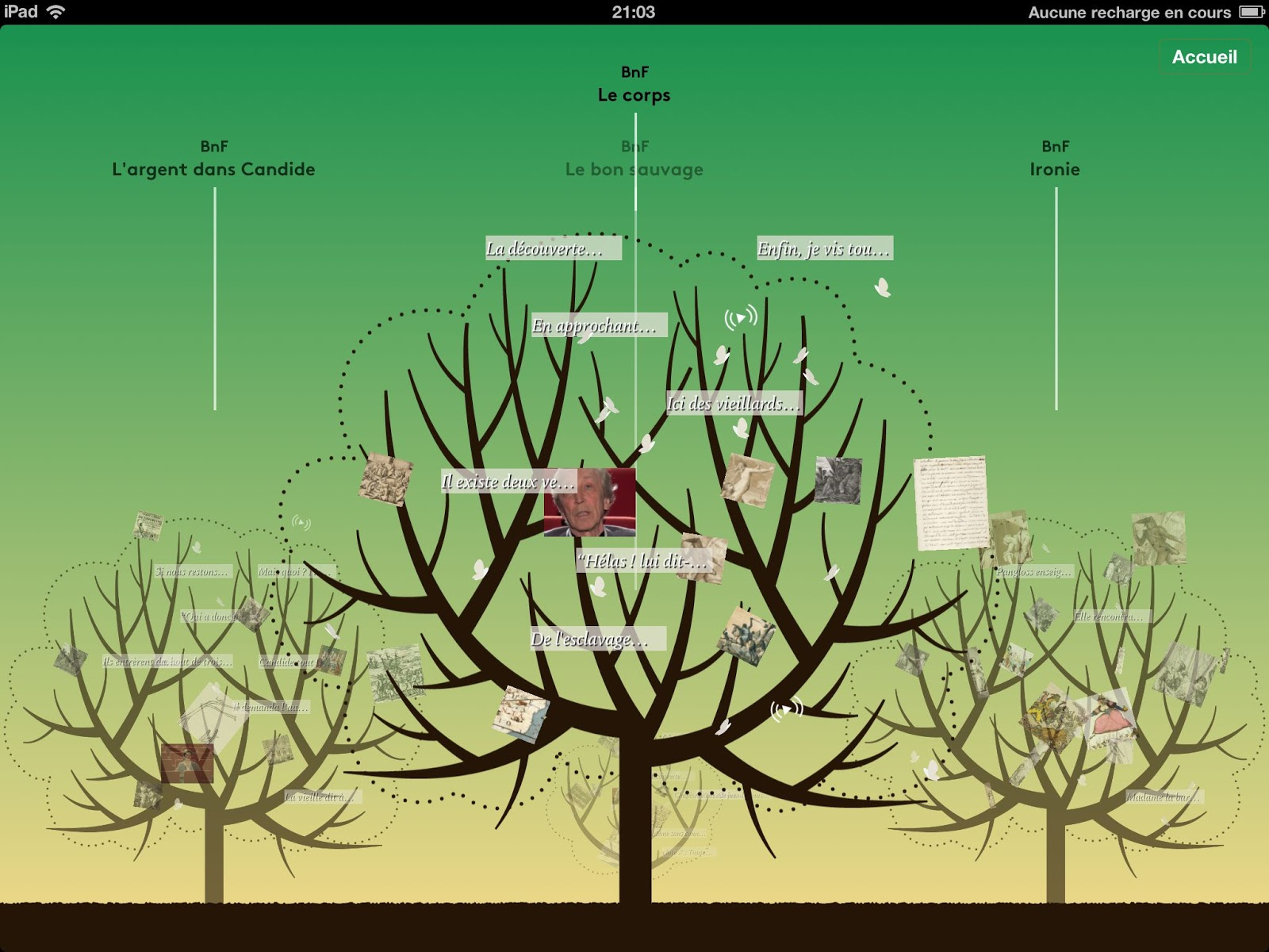 Le blog du labo bnf candide l dition enrichie for Candide cultiver son jardin