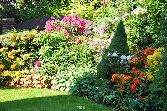 15 lat ogrodowych starań