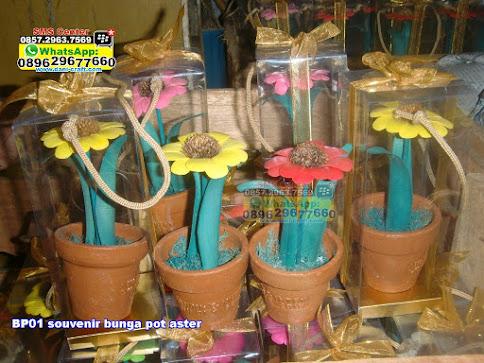 souvenir bunga pot aster murah