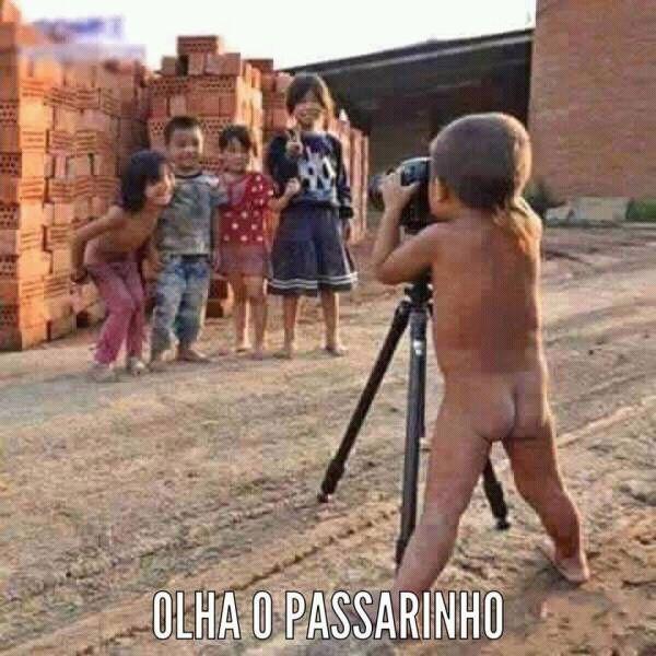 OLHA O PASSARINHO