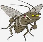cari obat anti kecoak jakarta, obat anti semut jakarta, obat semut dan kecoa jakarta