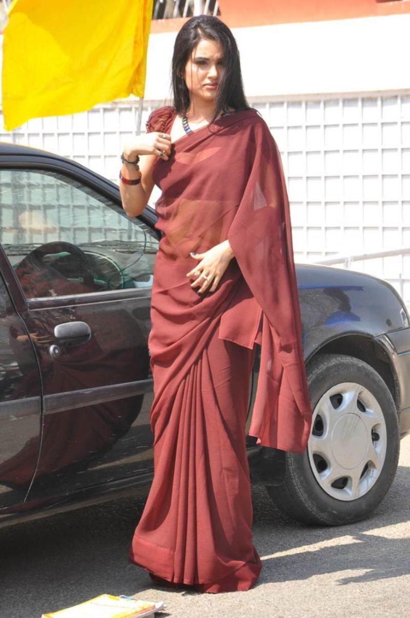 Kavya Singh Hot in Brown Saree Kavya Singh Brown Saree Hot