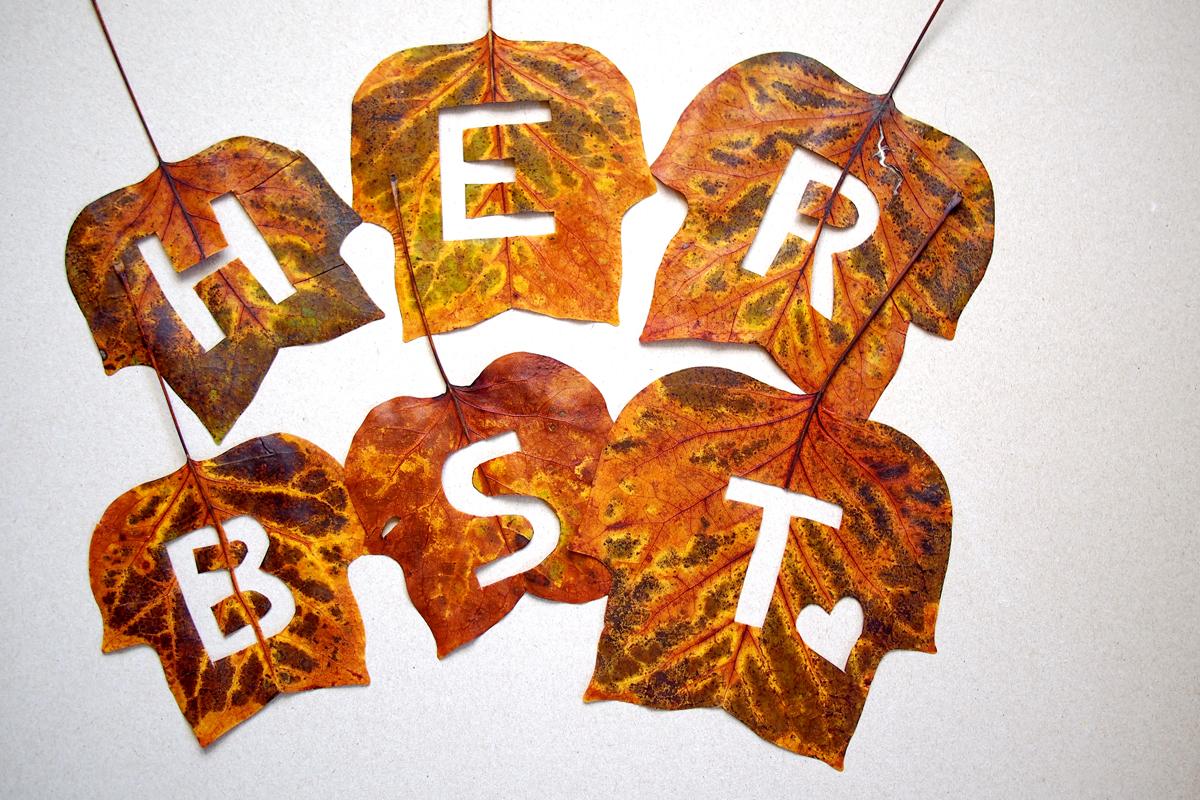 """Fünf-Minuten-DIY: """"Herbst""""-Blätter - """"Fee ist mein Name"""""""