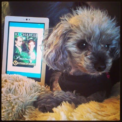 Murchie lounges on his sheep-shaped pillow with my e-reader behind him. Its screen displays the cover of A Case of Possession, featuring two pale-skinned men in Victorian dress in a nimbus of green light.