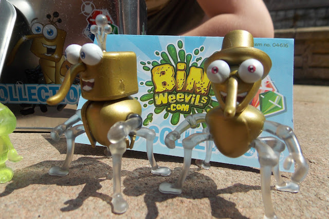 golden bin weevil figures