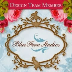 Blue Fern Studios Design Team Member from January 2014 thru July 2014
