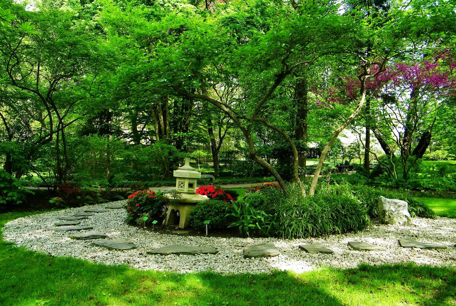 Ścieżka japońska w ogrodzie botanicznym