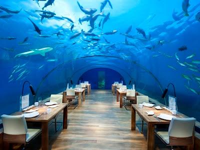hotel conrad rangli island, maladewa