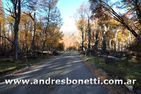Camino Lago del Desierto - El Chalten - Patagonia - Andres Bonetti