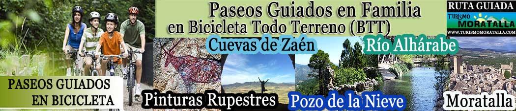 PASEOS GUIADOS EN BICICLETA: