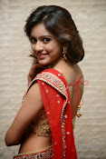 vithika sheru half saree photos-thumbnail-6