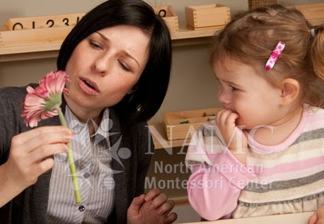 role of montessori teacher Nurturing the love of learning: montessori education for the preschool years - duration: 8:03 educational video publishing 101,260 views.