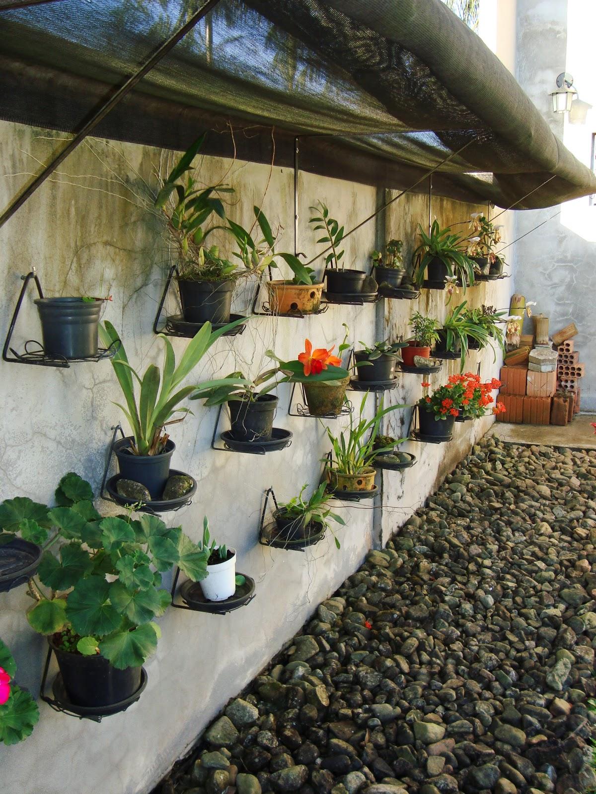 para quem tem pouco espaço ou quer cultivar alguns tipos de plantas