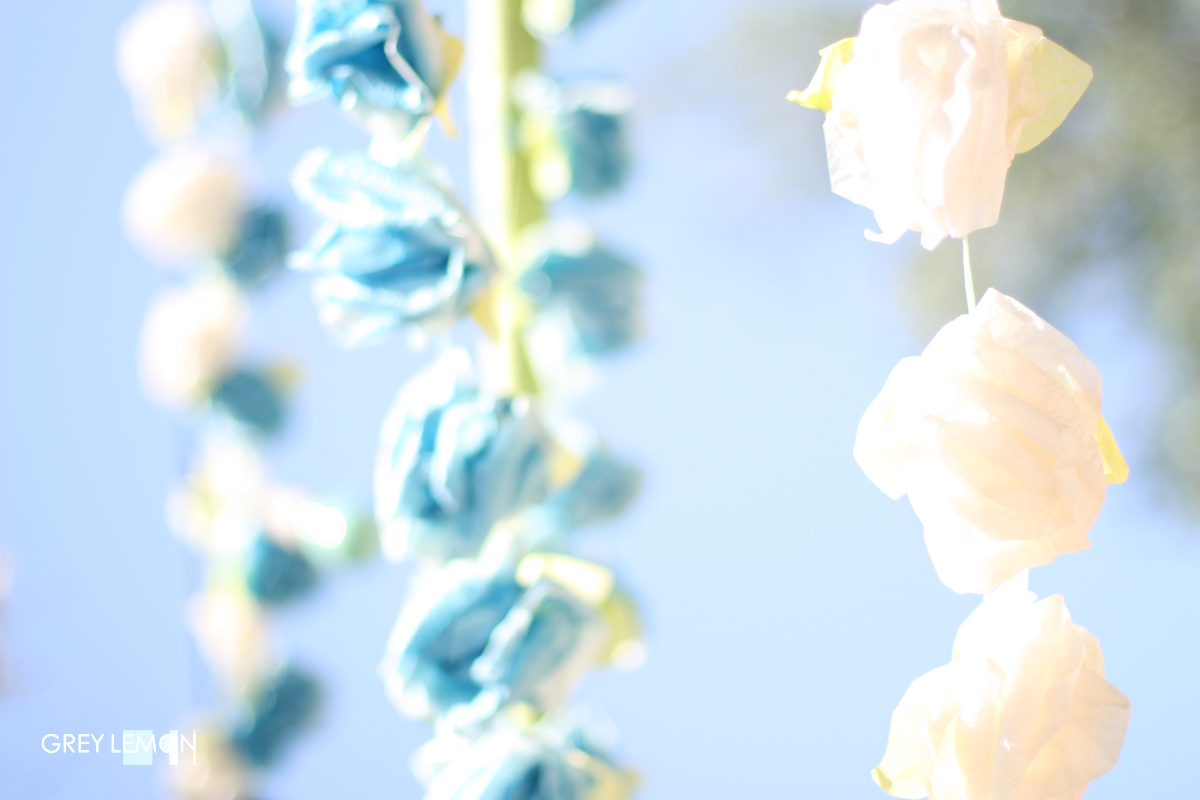 http://2.bp.blogspot.com/-8yBViryYe6E/Tgsp2bIvrkI/AAAAAAAAB38/fzcO80xvmhI/s1600/GreyLemon-SummerColor-Blue1.jpg