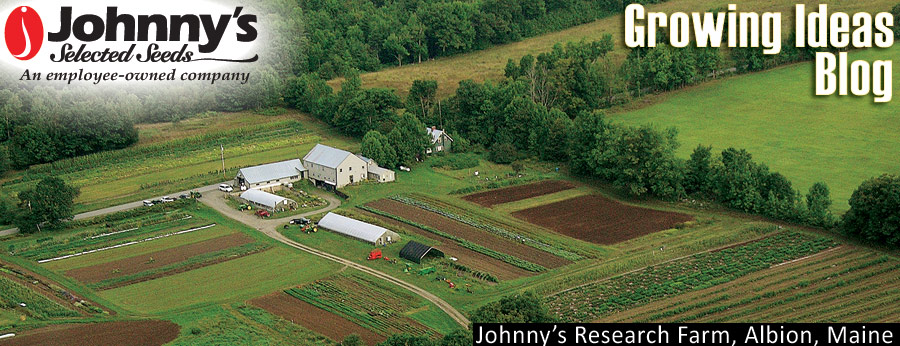 Growing Ideas with Johnny's Selected Seeds