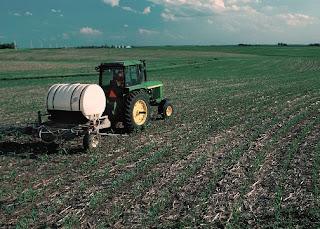 Kegiatan pemupukan pada lahan pertanian.