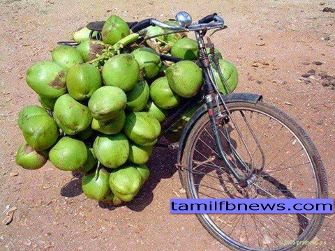 Best Facebook Tamil Status About Tender coconut