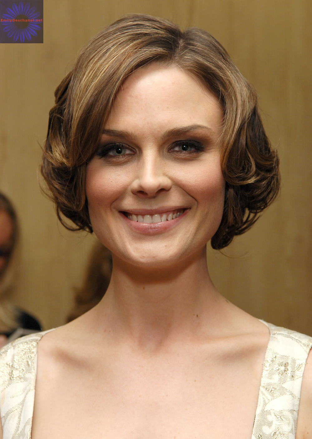 Emily Deschanel Hairstyles 2
