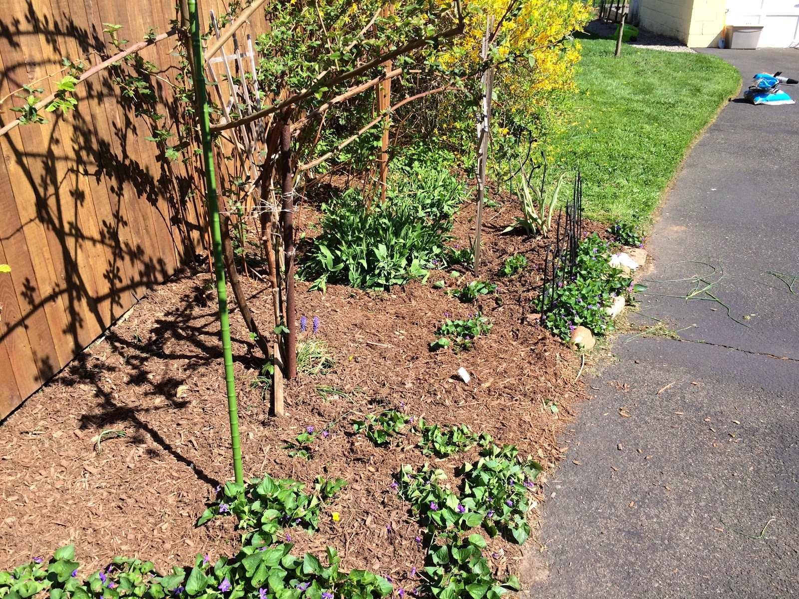 In the Little Yellow House: Backyard Garden Bed Progress