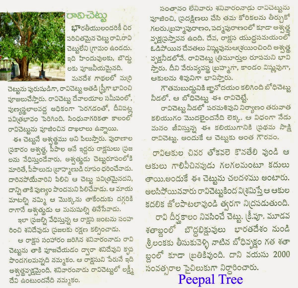 christmas essay in telugu